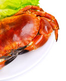 Tasty boiled crab Royalty Free Stock Image
