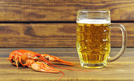 Tasty boiled crayfish Royalty Free Stock Photos