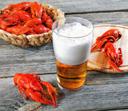 Tasty boiled crayfishes and beer Stock Image