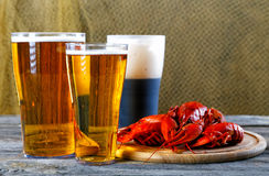 Tasty boiled crayfishes and beer on  table Royalty Free Stock Photos