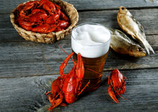 Tasty boiled crayfishes vyaleny fish and beer Stock Photos