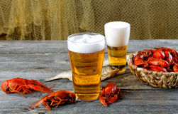 Tasty boiled crayfishes vyaleny fish and beer Stock Image