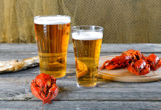 Tasty boiled crayfishes vyaleny fish and beer Stock Images
