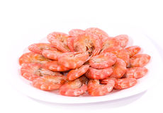Tasty boiled shrimps on plate Stock Photos
