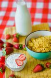 Tasty breakfast, fresh milk in glass bottle, cereals with honey and nuts in green ceramic bowl and a lot of strawberries around royalty free stock photo