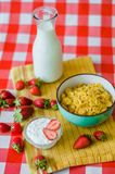 Tasty breakfast, fresh milk in glass bottle, cereals with honey and nuts in green ceramic bowl stock image