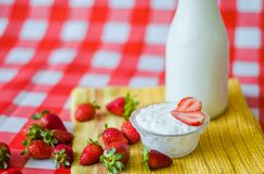 Tasty breakfast, fresh milk in glass bottle, tasty yogurt in small glass bowl royalty free stock photos
