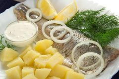 Tasty breakfast from herring with onions and lemon Royalty Free Stock Image