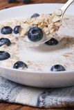 Tasty breakfast of muesli with blueberries and milk vertical Stock Image