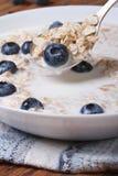 Tasty breakfast of muesli with blueberries and milk vertical Stock Image