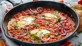 Tasty Breakfast Shakshuka in a Iron Pan. Fried eggs with tomatoes, red, yellow peppers, onion, parsley, Pita bread and Royalty Free Stock Photo