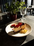 Tasty bright sunny cheesecake under rays of sun royalty free stock photo