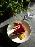 Tasty bright sunny cheesecake under rays of sun royalty free stock photography