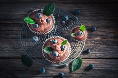 Tasty brown cupcake made of cream and fresh fruits Stock Image