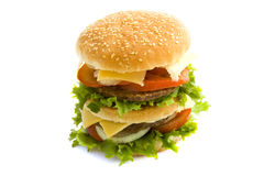 Free Tasty Burger Stock Image - 16048311