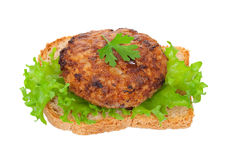 Tasty burger Royalty Free Stock Images