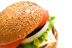 Tasty burger Stock Photography