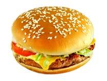 Tasty Burger Royalty Free Stock Image