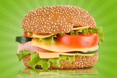 Tasty Burger Stock Images