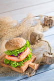 Tasty burger with fish and vegetables Stock Photography