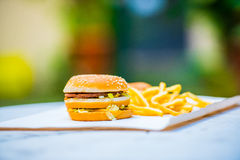 Tasty burger with french fries on a piece of paper - side view. Tasty burger with sesame bread, salad and cheese and french fries in the background on a white Stock Image