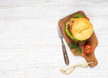 Tasty Burger Sandwich with Copy Space Stock Photo