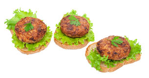 Tasty burgers Stock Image