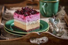 Tasty cake with black currant. On rustic wooden tray Royalty Free Stock Photos
