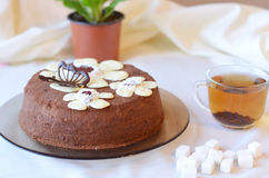 Tasty cake with chocolate butterfly and flowers on brown plate Stock Images