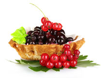 Tasty cake with cream and currant Royalty Free Stock Images