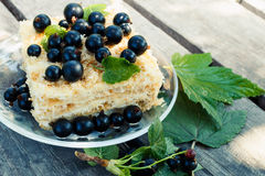 Tasty cake decorated with fresh black currant Royalty Free Stock Photos