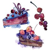 Tasty cake in a watercolor style. Background illustration set. Watercolour drawing fashion aquarelle isolated. vector illustration