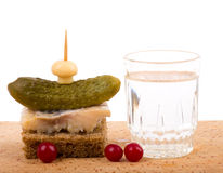 Tasty canape and russian vodka Stock Photos