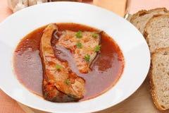 Tasty carp fish soup Stock Photography