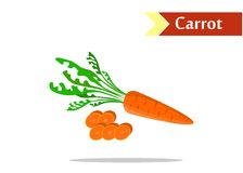 The tasty carrot Royalty Free Stock Image