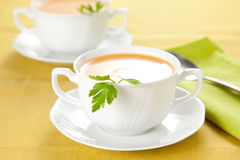 Tasty Carrots puree with parsley Stock Images