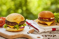 Tasty cheeseburger Royalty Free Stock Images