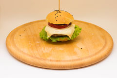 Tasty cheeseburger on a wooden board. Tasty cheeseburger with tomatoes, cucumbers and green salad on a wooden board  on a white background Stock Images