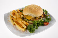 Tasty chicken cheese burger! Stock Photography