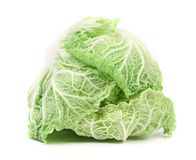 Tasty Chinese cabbage. Stock Photography