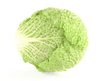Tasty Chinese cabbage isolated Stock Photos