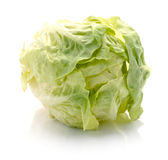 Tasty Chinese cabbage Royalty Free Stock Photo