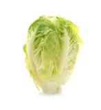 Tasty Chinese cabbage Stock Photo