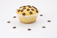 Tasty chocolate chip muffin. Chocolate chip muffin on white background stock images