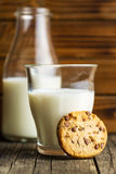 Tasty chocolate cookie. Royalty Free Stock Photos