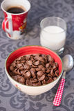 Tasty chocolate cornflakes in thel bowl Stock Photography