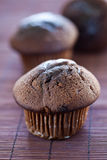 Tasty chocolate muffin Royalty Free Stock Photo