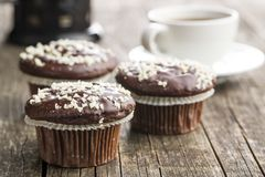 Tasty chocolate muffins. Royalty Free Stock Image