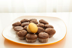 Tasty chocolate muffins with one cake muffin on top. Tasty muffins with one cake muffin on top in the plate on the table near to window with natural sun light Royalty Free Stock Image