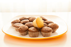Tasty chocolate muffins with one cake muffin on top. Tasty muffins with one cake muffin on top in the plate on the table near to window with natural sun light Stock Images